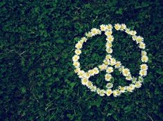 30 Simple Ways to be More Eco-Friendly