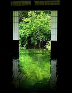 京都岩倉 実相院 Jissou-in Temple, Kyoto, Japan #Kyoto, #Green #緑 もっと見る