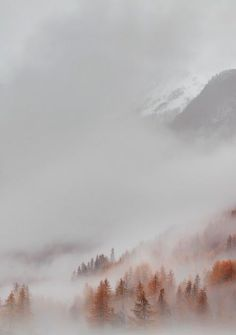 mountainous fog