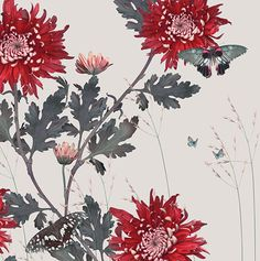Shop the Michael Angove Collection and discover beautifully patterned wallpaper murals. Surface Pattern, Surface Design, Textile Design, Floral Design, A Level Textiles, Chrysanthemums, Work Inspiration, Beautiful Paintings, Gouache