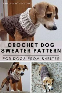 Crochet Dog Sweater Free Pattern, Dog Coat Pattern, Crochet Dog Patterns, Knit Dog Sweater, Dog Sweaters, Crochet For Dogs, Dog Hats Crochet, Crochet Jacket Pattern, Crochet Dog Clothes