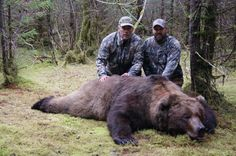 """If you haven't been hunting in Africa, you need to go. And don't save it for """"when you're too old to hunt in North America. Big Game Hunting, Bear Hunting, Hunting Tips, Alaskan Brown Bear, Outdoor Survival, Survival Skills, Mouth Open, Yards, Teeth"""
