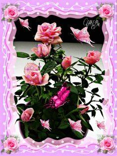 Flowers Gif, Butterfly Flowers, Love Flowers, Diy Flowers, Butterflies, Beautiful Flowers Images, Beautiful Gif, Beautiful Roses, Love You Gif