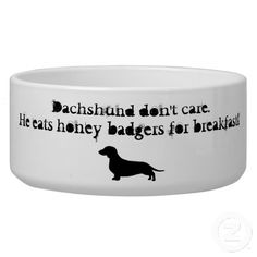 Dachshunds were originally bred for badger hunting. Doxie lovers will enjoy this humorous spin on the honey badger theme. Dachshund don't care, he eats honey badgers for breakfast. They are pretty bad ass. Dachshund Funny, Dachshund Love, Dog Water Bowls, Long Haired Dachshund, Honey Badger, Weenie Dogs, Doggies, Daschund, Pet Bowls