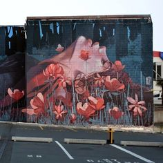 Bezt from Etam Cru (2015) - Dunedin (New Zealand)