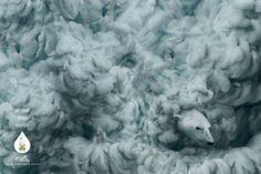 Clorox Green Works: Turtle, Dolphin, Polar bear