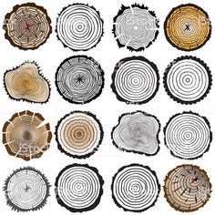 Vector wooden texture set of Tree rings background and saw cut tree trunk. Variety of shapes and Old Wood Texture, Wood Texture Background, Wooden Textures, Logo Arbol, Tree Trunk Drawing, Crea Design, Wood Logo, Texture Drawing, Logo Design