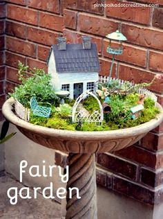 Fairy Garden - Pink
