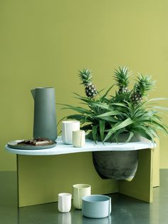 DIY: Die Ananaspflanze als besondere Deko-Idee