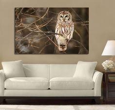 Wise Owl Watch