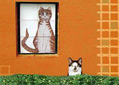 Get Gentle Humor in Designer Cat Art: The Amsterdam Cat Tile
