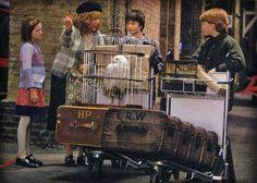 Ginny, Molly, Harry & Ron
