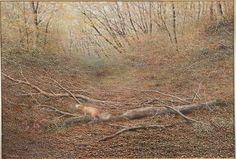 「森の領域(秋)」続木唯道/油彩(P50号)/ 1991年 日仏現代美術展入選もうひとつの作品「森の領域(春)」の秋バージョンで、テン(貂)が主役だ。 架空の風景である「森の領域(春)」に対して、現地で下絵を描いた現実の雑木林である。 富士の裾野、自衛隊演習場の広大なすすき野原を左に見ながら、富士山に向かって上るスカイラインで偶然視界に入った紅葉スポット。差ほど広くはない起伏に富んだ地形が名状し難い彩に包まれていた。 淡い緑から黄色や赤へのグラデーションが気品ある透明感を醸していて自然の妙、という他ない。 京都古寺名刹の、これでもか!と言わんばかりの真紅のモミジ尽しの庭を愛でる人は多いが、何となく抵抗感がある。 モミジは和の風情を持つ素敵な樹木だが、調和を欠いた庭師の驕りが見え隠れしてしまうからだ。 自然のことは自然に聞け!森はそう語っていた。