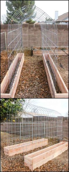 Build this trellis and raised garden box combination. Cucumber, snap peas, green beans, tomatoes… ah, just think about that fresh organic food you can grow in a small area! Another huge advantage is that harvesting is a breeze. Veg Garden, Garden Trellis, Terrace Garden, Vegetable Gardening, Harvest Garden, Garden Mulch, Diy Garden Fence, Diy Trellis, Garden Plants
