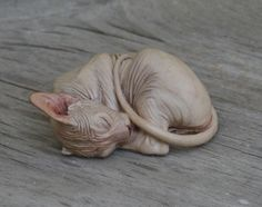 paint sphnix cat | currently out of stock the sphynx will begin shipping in january
