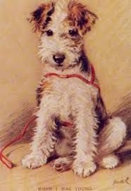 Image result for seated fox terrier dog