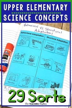 Looking for a supplement to your or grade science education curriculum? These science sorting activities cover the full year and include topics such as matter, ecosystems, force and motion, and energy. The perfect classroom resource for interactive 4th Grade Science, Elementary Science, Science Classroom, Teaching Science, Science Education, Upper Elementary, Science Vocabulary, Science Resources, Science Lessons