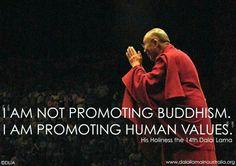 Promote human values