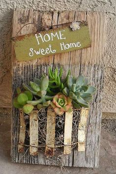 Succulent planter sign