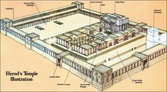 the temple of herod diagram | Herod's Temple - Herod's Temple Illustration