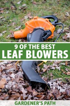 Are you looking for a leaf blower? Check out our tips and make sure you're armed with the information you need to select the right machine – gas or electric, handheld or backpack – that's right for your landscape and work style. Learn about 9 of the best leaf blowers now on Gardener's Path. #leafblower #gardenerspath