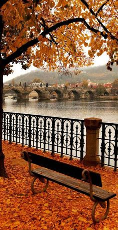 22 Reasons why Czech Republic must be in the TOP of your Bucket List AmonGraf is part of Autumn scenery - 14 Famous Charles Bridge in Autumn Melancholy, Prague Czech Republic Pont Charles, Charles Bridge, Fall Pictures, Fall Photos, Halloween Pictures, Wallpaper Inspiration, Beautiful World, Beautiful Places, Beautiful Pictures