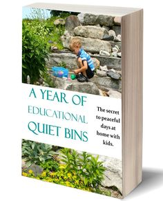 A Year of Educational Quiet Bins