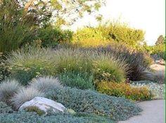 Palos Verdes – contemporary – landscape – los angeles – Bliss Garden Design Source by Modern Landscape Design, Landscape Plans, Modern Landscaping, Contemporary Landscape, Landscaping Plants, Landscaping Company, Landscaping Ideas, Dry Garden, Gravel Garden