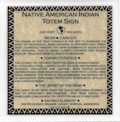 Native+American+Medicine+Wheel+Earth | Native American Astrology Brown Bear