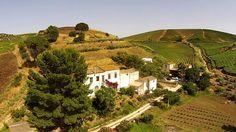 Agriturismo Tarantola [Sicily] on Vimeo http://www.organicholidays.com/at/2592.htm
