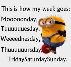 How my week goes funny quotes quote crazy funny quote funny quotes days of the week humor minions minion quotes
