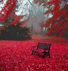 love the redness.