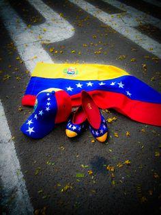 Venezuelan Flats - Venezuela Flag