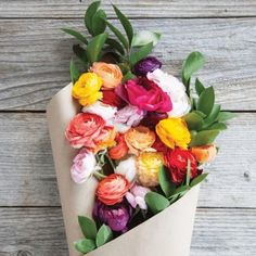 Shop for The Bouqs Volcano Collection 'Cake and Cream' Deluxe Ranunculus Bouquet. Get free delivery On EVERYTHING* Overstock - Your Online Flowers & Plants Outlet Store! Cream Flowers, My Flower, Beautiful Flowers, Purple Flowers, Cactus Flower, Exotic Flowers, Yellow Roses, Colorful Flowers, Spring Flowers