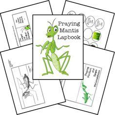 FREE Praying Mantis Animal Study & Lapbook Printables