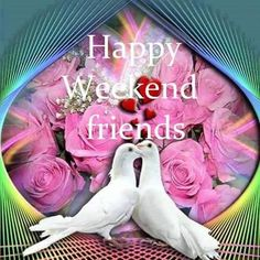 Happy Weekend Images, Dinosaur Stuffed Animal, Beautiful Pictures, Blessed, Blessings, Quotes, Happy Weekend, Qoutes, Dating