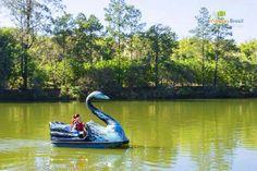 Atibaia, a 65 km de São Paulo, tem várias atrações para toda família…