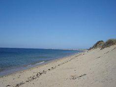 Herring Cove Beach - Dog Friendly