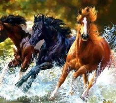 Horse painting ~ WOW, thought it was a photograph! VERY GOOD artistic talent! Painted Horses, Beautiful Horses, Animals Beautiful, Art Occidental, Horse Wallpaper, Amedeo Modigliani, Horse Drawings, Equine Art, Horse Pictures