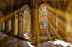 REFLEJOS MONACALES (PARA JORGE CACHARRÓN) http://fc-foto.es/25211652