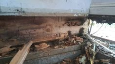 Under side wall all wood has been destroyed