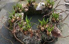 Haal het voorjaar naar je toe met deze krans met blauwe druifjes.    Nodig: mos (tuin), strokrans, kronkeltakken, blauwe druifjes, krammen, binddraad, koperkleurig binddraad,  (tuincentrum), zakjes decoratiemos met schors (Action), vogeltje (Action).    Omwikkel de strokrans met mos (uit de tuin!) en zet dit vast met binddraad/krammen. Duw de strokrans een beetje uit elkaar en plaats de bolletjes in de krans. Versier de krans met decoratiemos, schors, kronkeltakken en het vogeltje. Omwikkel…