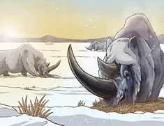 Woolly Rhinoceros by Ted Rechlin Prehistoric Wildlife, Prehistoric World, Prehistoric Creatures, Jurassic World Dinosaurs, Jurassic Park World, Monster Hunter, Ocean Crafts, Extinct Animals, Animal Illustrations
