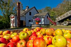 Clyde's Cider Mill has been making cider since 1881 in Mystic. This beloved seasonal operation is the oldest steam-powered cider mill in the nation. New England Fall, New England Travel, New England Style, Mystic Connecticut, Mystic Seaport, Beach Trip, Hawaii Beach, Oahu Hawaii, Beach Travel