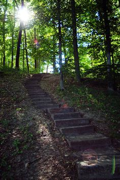 Stairs to Sherwood Lake 8x10 Print Only by erindonnellyellis, $45.00