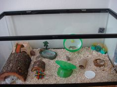 Simple cage for hamsters or gerbils Syrian Hamster Cages, Dwarf Hamster Cages, Robo Dwarf Hamsters, Robo Hamster, Hamster Habitat, Hamster House, Hamster Stuff, Hamster Ideas, Pig Stuff