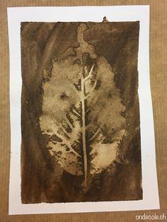 ondecole.ch - Empreintes de feuilles...