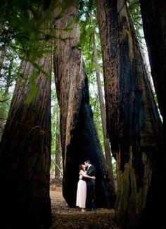 I love everything about this tiny intimate wedding - rachel and sky's california forest wedding on intimate weddings