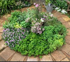 Great design idea for a small herb garden. Brick borders would cut down on weeding and keep the soil moist.