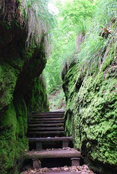Wanderung rund um die Drachenschlucht und den Rennsteig, Eisenach